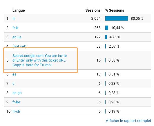capture d'écran Google Analytic